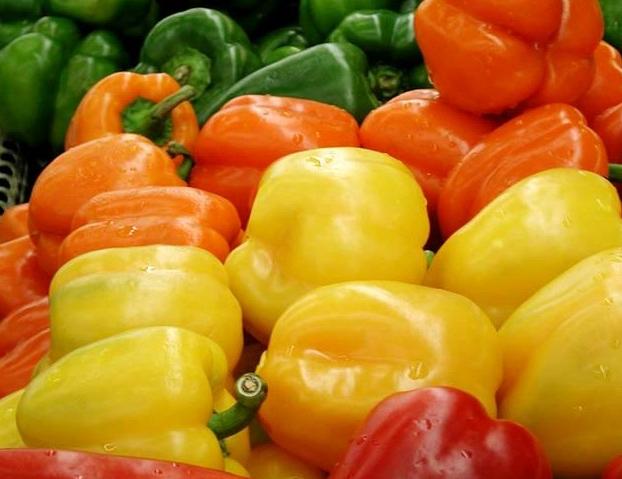 Сбор урожая болгарского перца